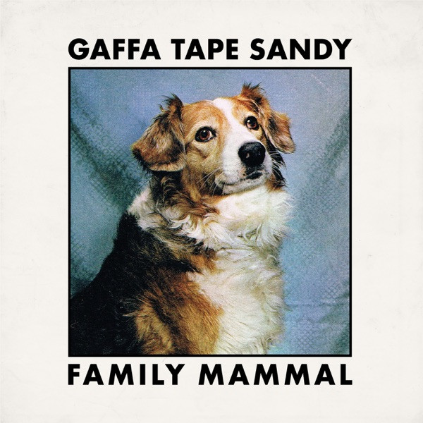 Gaffa Tape Sandy - Dinner Jacket