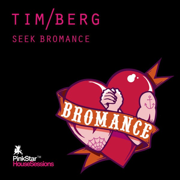 Seek Bromance - Avicii Vocal Edit