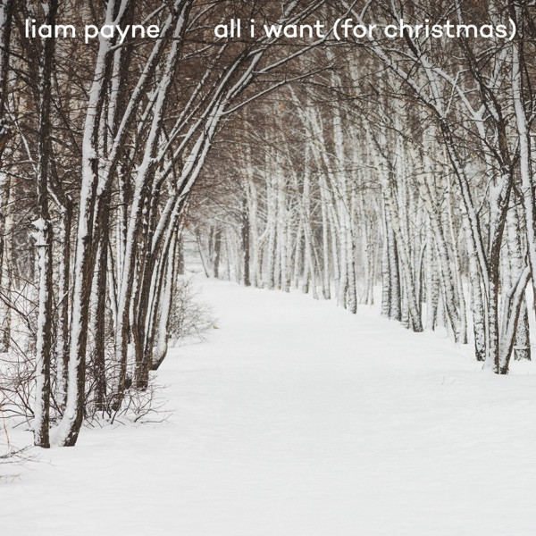 Liam Payne - All I Want