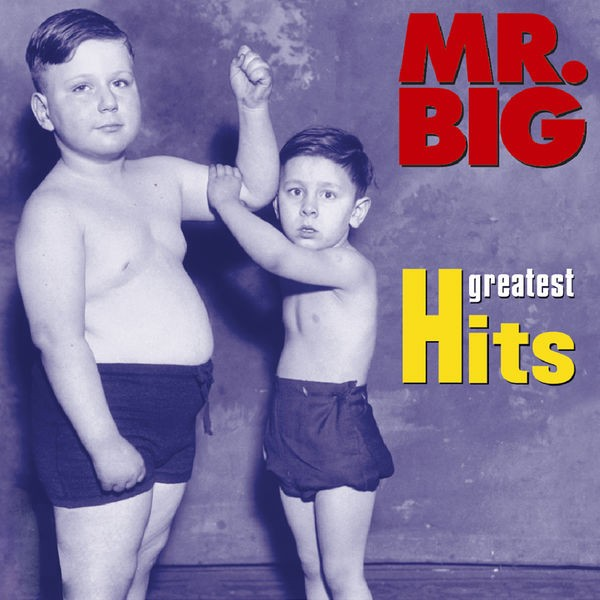 MR BIG - WILD WORLD