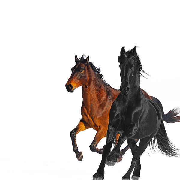 Lil nas X feat Billy Ray Cyrus - Old Town Road
