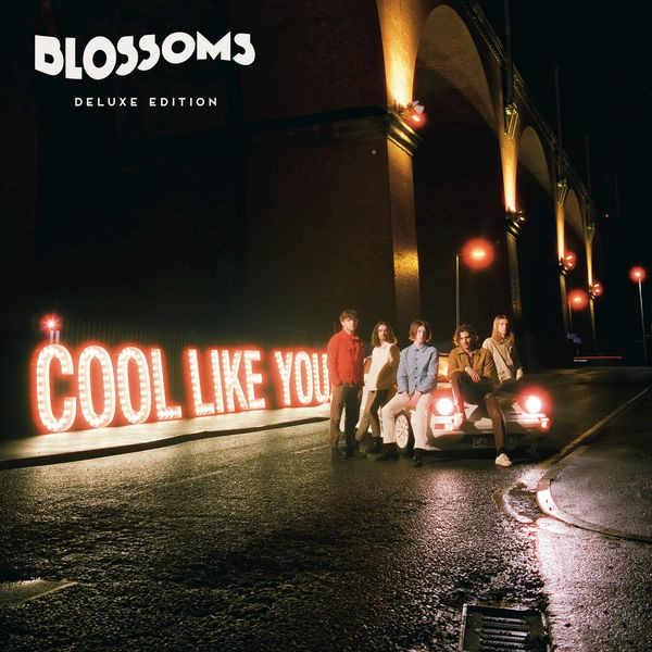 Blossoms - I Can't Stand It