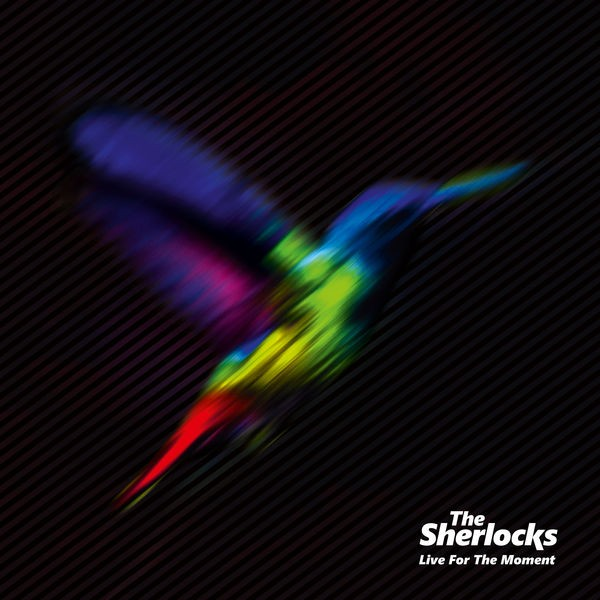 The Sherlocks - Chasing Shadows